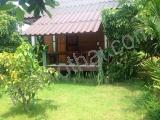 Casa Affitto Chiang Mai